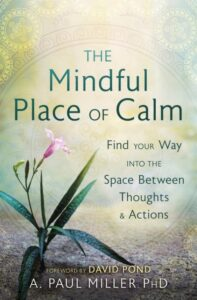 Book Review The Mindful Place of Calm A. Paul Miller PhD